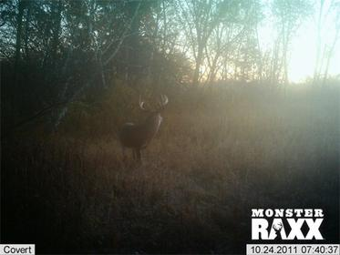 All the bucks on the hit list for the 2012 season!