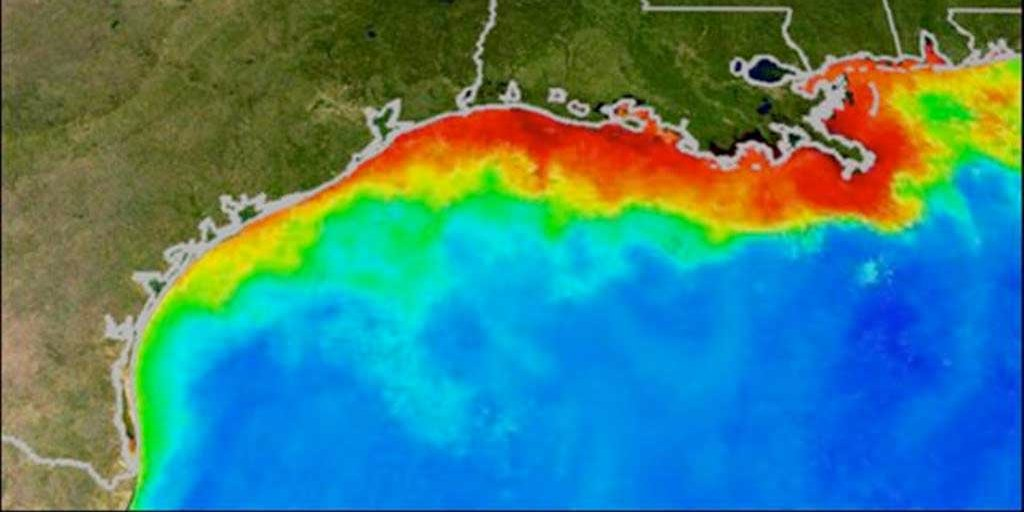 gulf-of-mexico-sets-a-new-record-for-the-worlds-largest-dead-zone.jpg